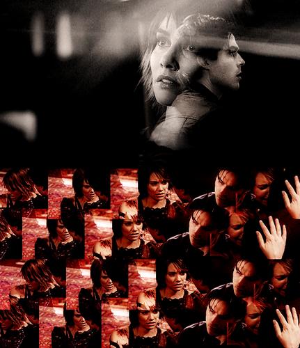 Damon/Rose