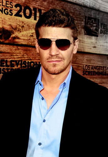 David Boreanaz at Fox's LA Screenings Party