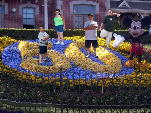 Disneyland imagens
