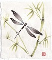 Dragonfly and Bamboo