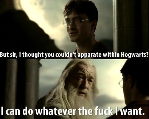 HP. <3