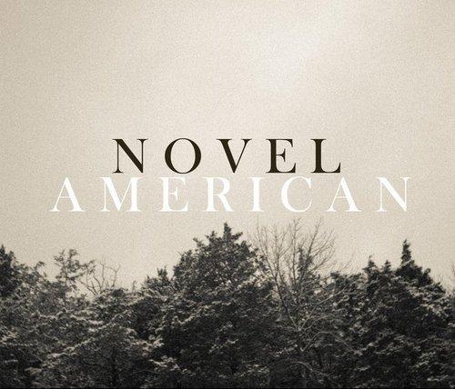 Novel American