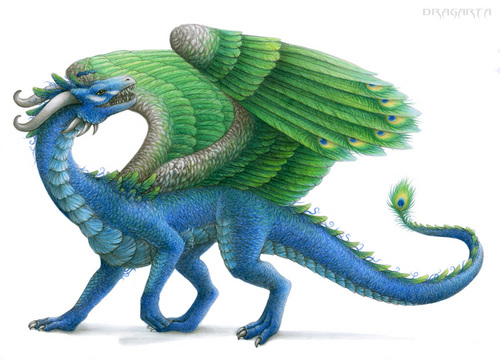 Peacock Dragon