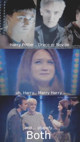 Harry Potter vs Chạng vạng hình nền called Snog, marry, stupefy