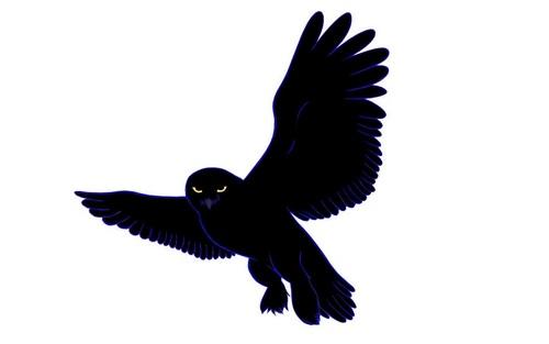 Snowy Owl of The Night Fanart