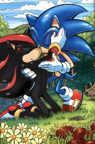 Sonadow wallpaper containing anime entitled Sonic x Shadow ~ <3