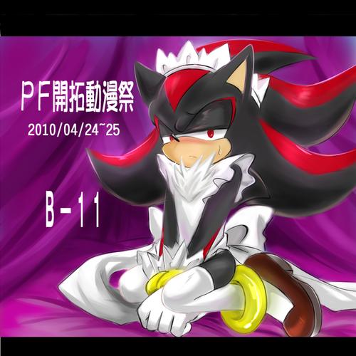 青黑(sonadow) 壁纸 entitled Sonic x Shadow ~ <3