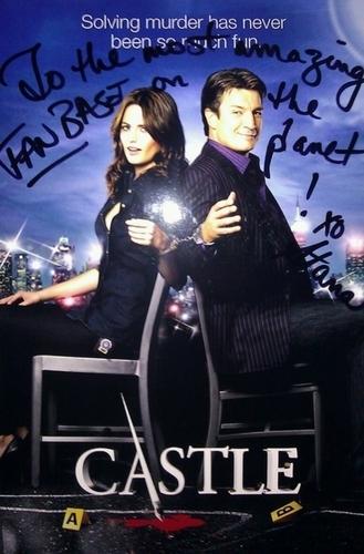 Stana Autographed 城 poster