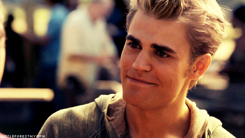 Stefan Salvatore 壁紙 entitled Stefan Salvatore;