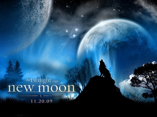 The Twilight Saga New Moon