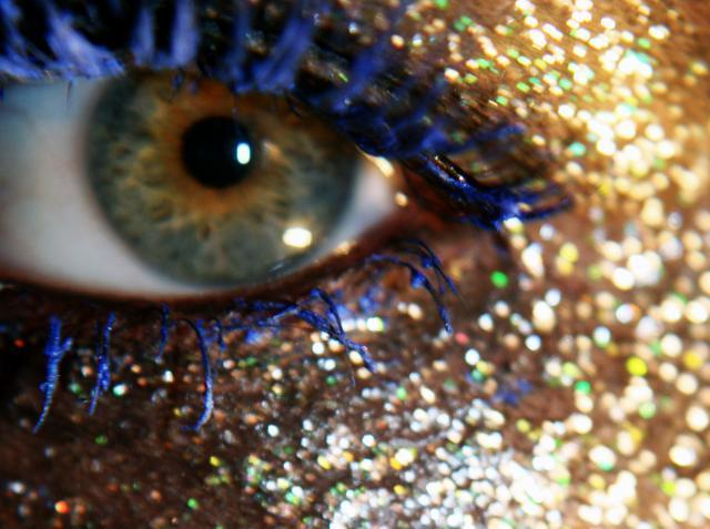 Bay scallops eyes