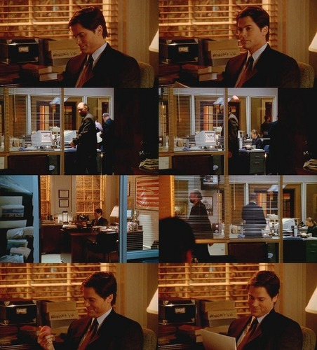 The West Wing wallpaper probably with a brasserie, a tobacco shop, and a bistro called 2x15- 'Ellie'