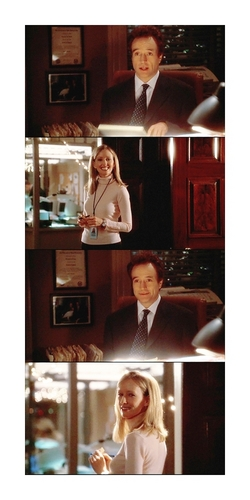 The West Wing wallpaper entitled 5x09