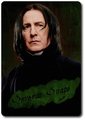 Character Card - Severus Snape