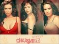 charmed - Charmed Wallpaperღ wallpaper