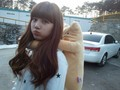 Cute suzy - baek-suzy photo