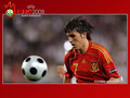 david-villa - David Villa Euro 2008 wallpaper