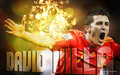 david-villa - David Villa FIFA World Cup 2010 wallpaper