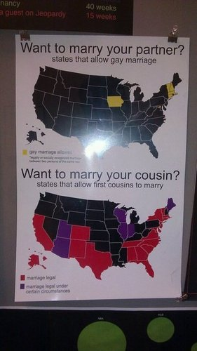 Gay Marrige vs. Cousin Marrige