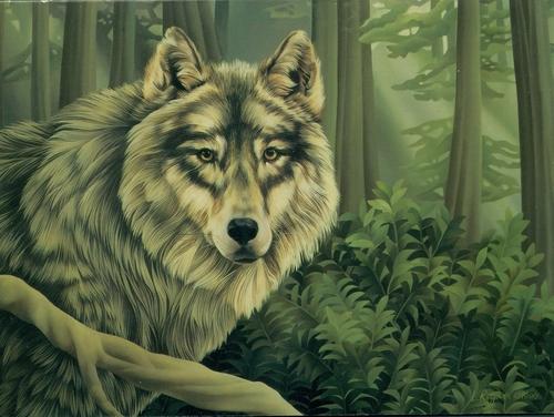 Grey волк