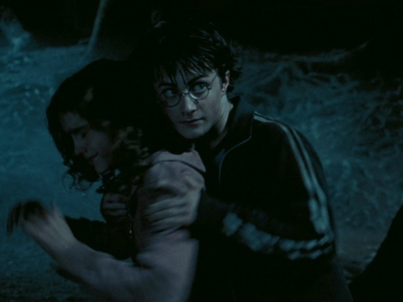 Harry and Hermione :)