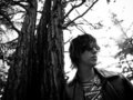 Julian Casablancas - julian-casablancas photo