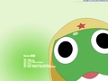 Keroro - keroro wallpaper