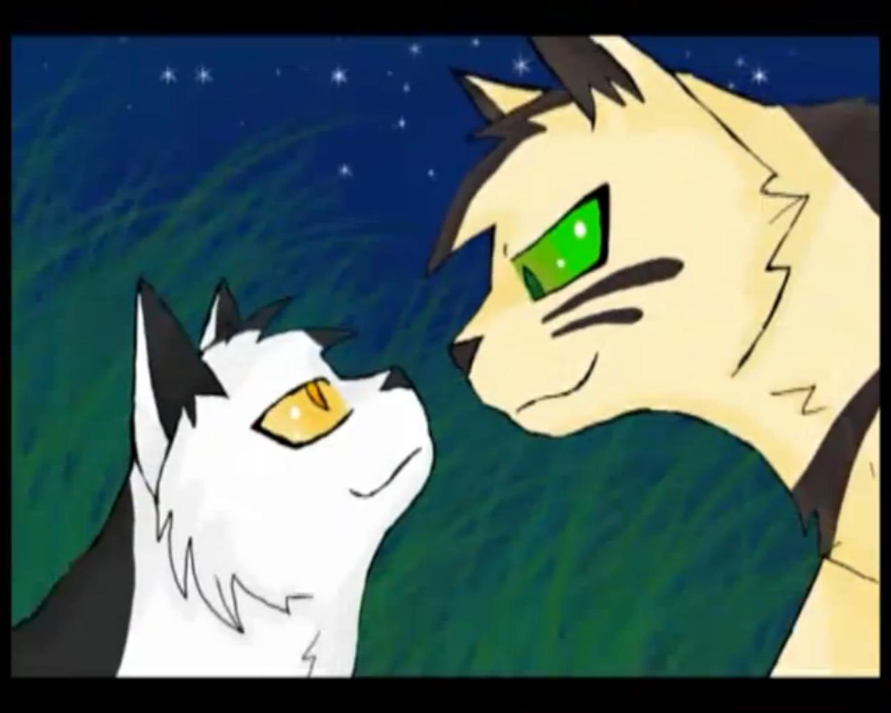 Images Of Longtail Warrior Cats
