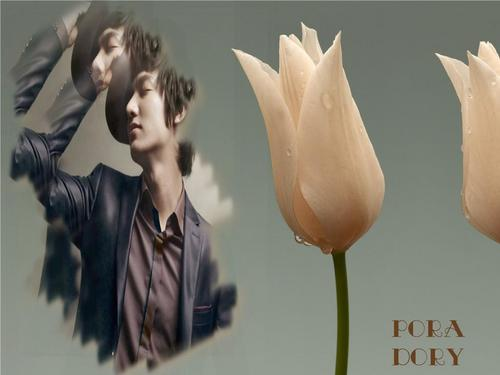 Lee Min Ho wallpaper entitled MiN Ho
