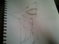 My Version Of Shark! - random-role-playing fan art