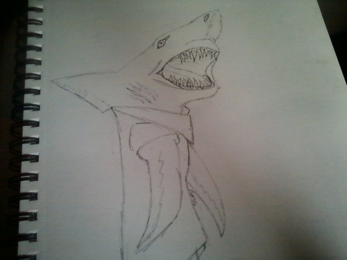 My Version Of Shark!