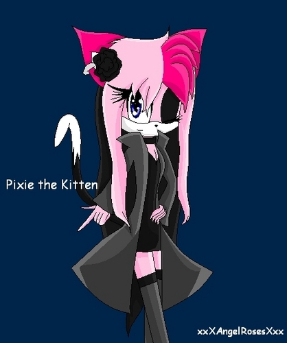 Pixie-dark rose