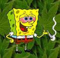 aleatório funny spongebob pictures :D