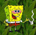 बिना सोचे समझे funny spongebob pictures :D