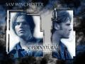Sam  - the-winchesters wallpaper