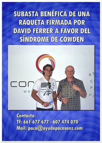 Subasta David Ferrer
