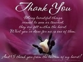 Thankyou for all your support Frances   - teddybear64 photo