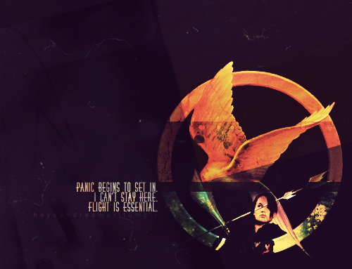 The Hunger Games ♥ - the-hunger-games Photo