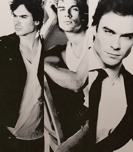 The Vampire Diaries TV montrer fond d'écran entitled anjosephsomerhalder.tumblr