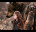 jacob and nessie - jacob-black-and-renesmee-cullen photo