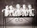 nice - babies wallpaper