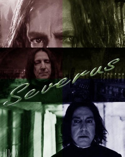 severus color of my Liebe