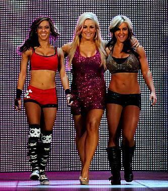 AJ Lee,Natalya,Kaitlyn
