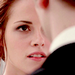B.D - breaking-dawn icon