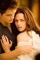 BD EDWARD & BELLA - twilight-series photo
