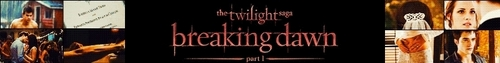 Breaking Dawn The Movie photo titled Breaking Dawn Banner