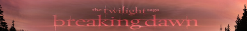 Breaking Dawn Banner