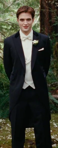 Breaking Dawn teaser trailer: Groom Edward