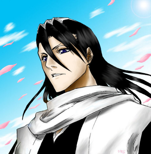 Byakuya Looks Out Over the Seireitei