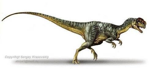 Dinosaurs wallpaper entitled Dilophosaurus
